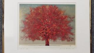 星襄一  大樹(赤)