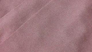 江戸小紋 彫師:住田双光 染師:服部光擴 極小鮫小紋柄